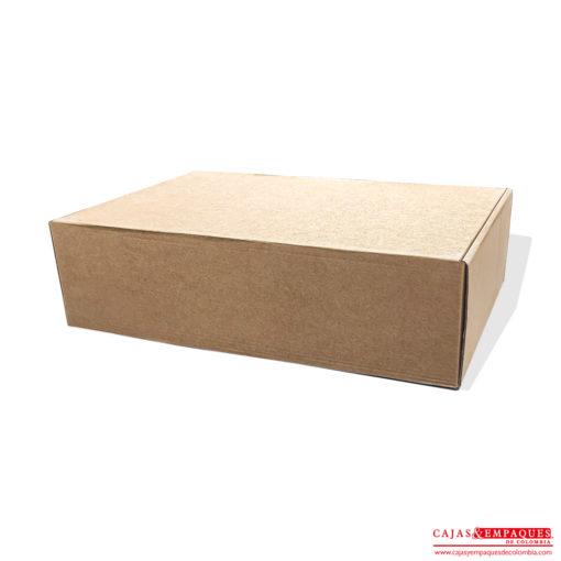 cajas-y-empaques-de-colombia-caja-plegadiza-microcorrugada-1